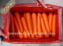 zanahoria fresca vegetales nombres para las explotaciones agrícolas