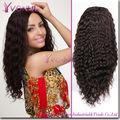más bajo precio brasileño del pelo humano peluca llena del cordón