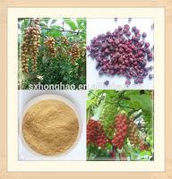 Top Quality Schisandrins 2% 5% HPLC Schisandra Berries P.E