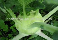 Vegetables Seeds: Fruit Kohlrabi Seeds