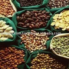 animal feed corn bran