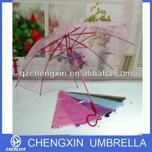 "23""*8k colorful question mark handle clear umbrella"