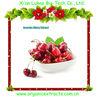 Acerola cherry extract vitamin c whitening injection