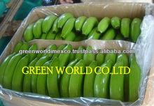 PREMIUM FRESH GREEN BANANA - COMPETITIVE PRICE