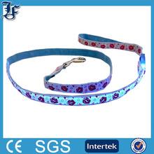 Retractable Leash LED Pet Collar