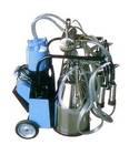 High capacity dairy farm use piston double bucket milk machine