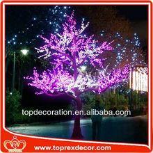 Promotional christmas led star lights