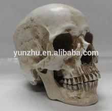 Halloween Decoration Carevd Resin Skull Sculpture