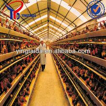 chicken cage (design layer chicken cage, breeding chicken cage, small chicks cage)