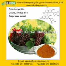 Hot Sell price of grape seed extract alcohol 95 for sale