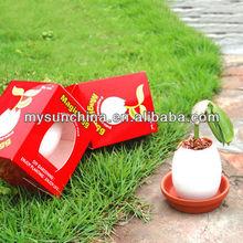 Magic Egg,Cermic the best gift for children ,novelty DIY Planter