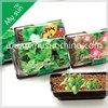 Seeds Basin Set, Mini Greenhouse Garden, Plastic Pot.PVC pot