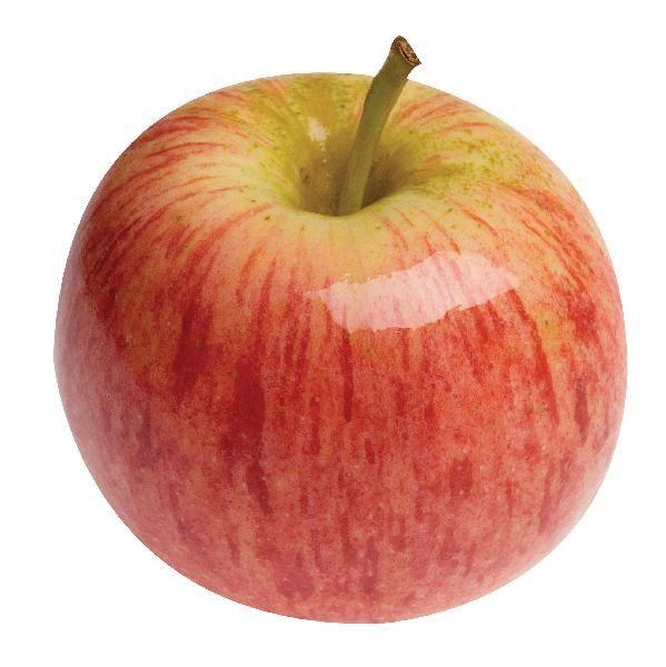 งานกาล่าสดแอปเปิ้ลฟูจิ