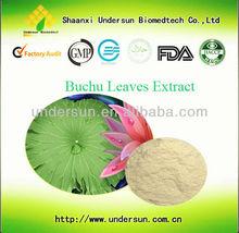 Food Supplement Buchu Leaf Extract 10:1