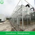 venlo glas gewächshaus für hydrokultur wächst system