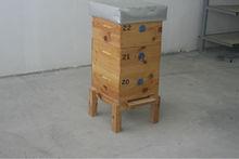 Complete Beehive Langstroth