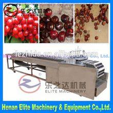 cherry/dates/olive/plum pit remove machine