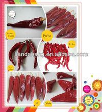HACCP/HALAL/KOSHER/FDA Red Chilli, Dried Chilli