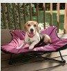 Metal frame bone Lounger Pet Bed