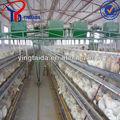 قفص الدجاج طبقة البيض/ مزرعة دواجن بيت التصميم