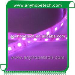 CE RoHS DC24V smd5050 high lumen led ring light for decoration