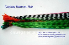 GOOD feather hair extension kit