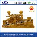 Methan biogas stromerzeuger von 20kw bis 1200kw