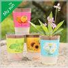 self watering flower pot ,novelty garden item, creative flower planting pot