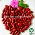2014 cosecha del cultivo del coventional hps calidad seca de color rojo oscuro judíasverdes tipo británico