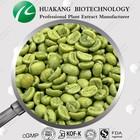 30%~60% Chlorogenic Acid green coffee bean price