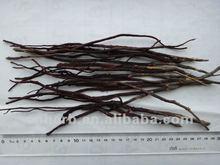 Dried Gromwell root,Lithospermum erythrorhizon,Radix lithospermi,Ying zi cao,Birth control medicine