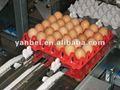 30 plástico de huevos de la bandeja del huevo