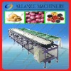 9 2014 best-selling onion vegetable sorting/grading machine