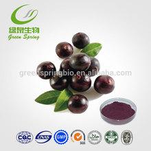 Natural Acai berry Extract