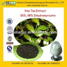 GMP Manufacturer Supply Natural 50%-98% Dihydromyricetin