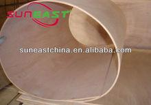 China Shandong Linyi Full hardwood and poplar flexible plywood,bending wood board,bent plywood