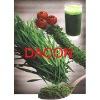 Barley/Wheat Grass juice Powder (real manufacturer)