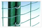 PVC Coated Euro Wave Wire Mesh / Iron Euro Fence (SGS Certified Factory)