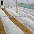 La temperatura de mantenimiento de la cubierta de efecto invernadero/tela/manta