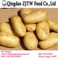 Pommes de terre fraîches prix par tonne