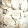 Shijixiang Dried mushroom(Organic )