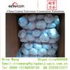 Chinese Fresh Garlic Import Export Market Dubai