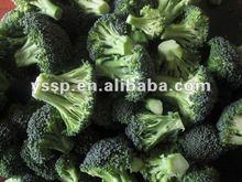 wholesale frozen vegetable