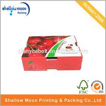 hot sales 5kg fruit packaging, fruit carton box apples
