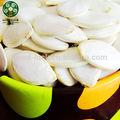 libero ogm 2014 raccolto tipo di semi di zucca bianchi come la neve semi di zucca