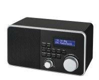 BC-800DA 2013 new products DAB FM Wireless Radio