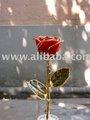 Rojo rosa adornado en oro 24k por vivir de oro- fuente original