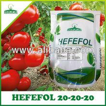 20-20-20 NPK Fertilizer
