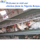 Best selling,Good quality BT factory A-120 chicken laying egg cages(Welcome to vist my factory)