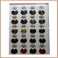 profissionais de cabelo cartela de cores para o salão de tintura de cabelo